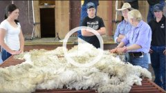 Watch the Wool Works feature video